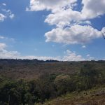 Terreno en Santa Elena Barillas km. 26.5 Villa Canales
