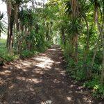 Terreno en Llanos Villa Canales