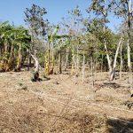 Terreno en Santa Elena Barillas